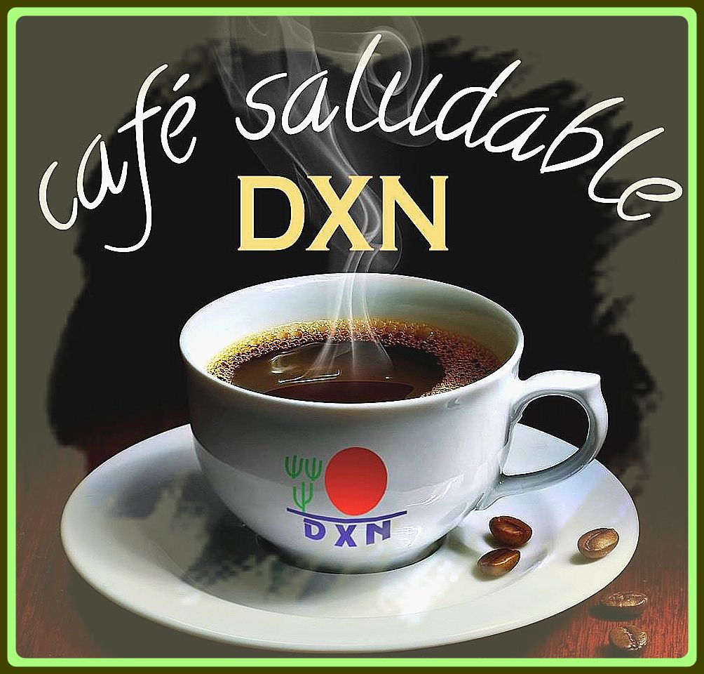beneficios del cafe ganoderma lucidum