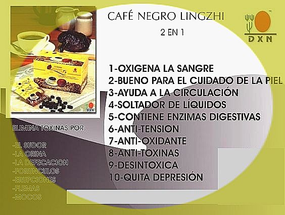 lingzhi coffee 2 en 1